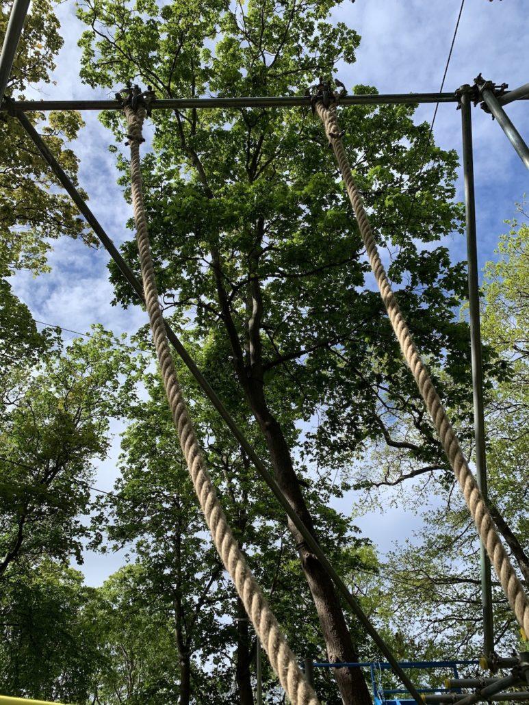 climbing ropes esher